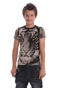 Desigual.kids.boy.TS.EVINIA.tiger.SS2014.41T3712_2000