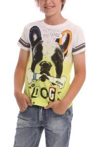 Desigual.kids.GUARULHOS.Tshirt.SS2014.42T3631_4125.$54