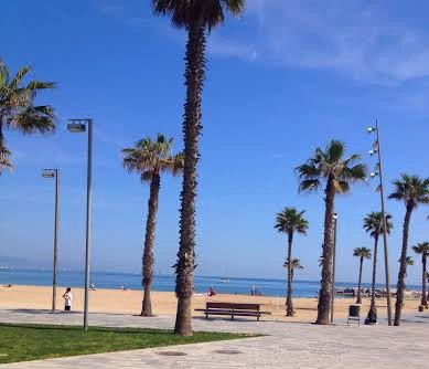 Barcelona.beach.in.front.of.Desigual.HQ.2014