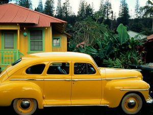 yellow-car.national.geographic