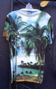 Desigual.GO.EXPLORE.Tshirt.back.$84.SS2015.