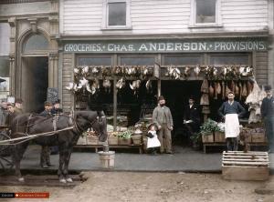 grocery18.164Cordova.1905